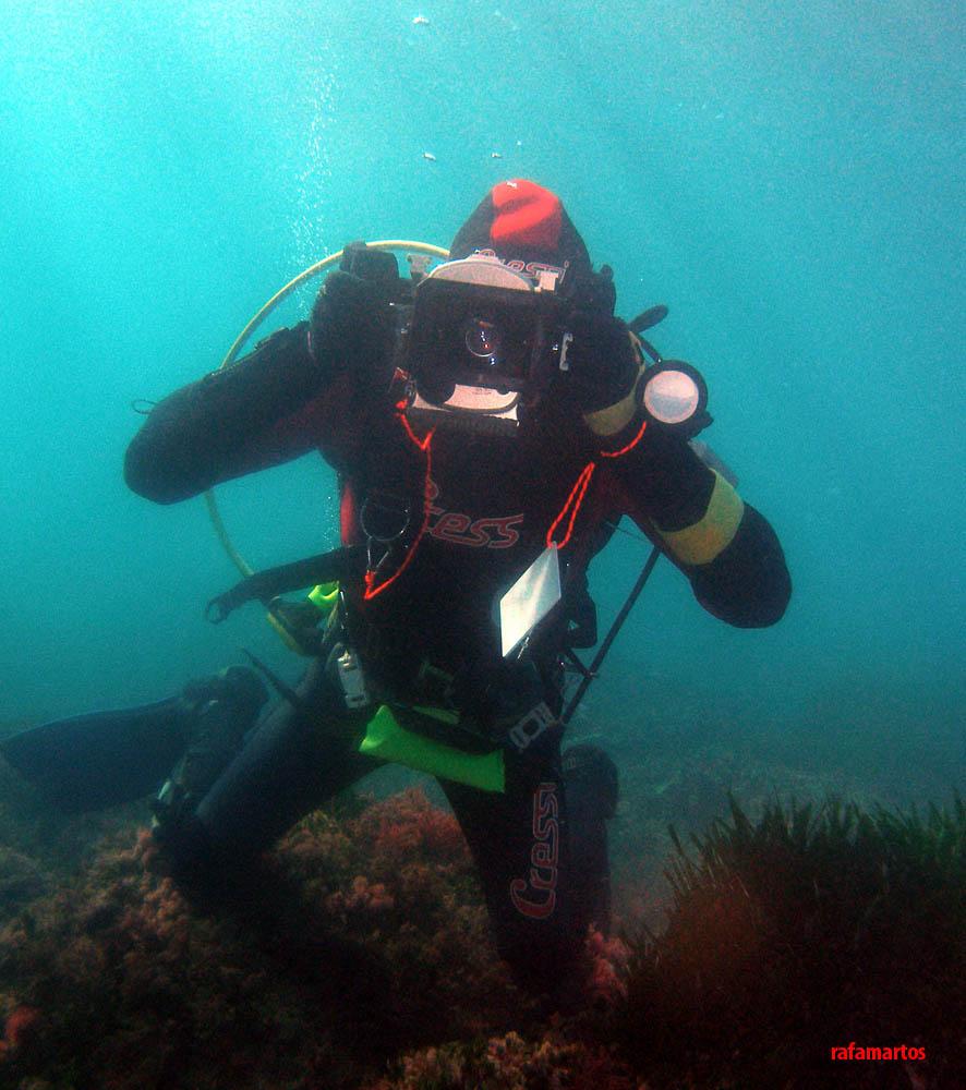 El naufragio de la fragata Guadalupe | Buceo y Snorkel