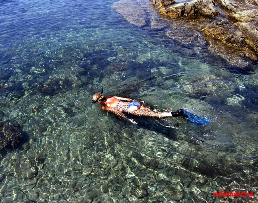 Buceo y snorkel en Tabarca | Buceo y Snorkel
