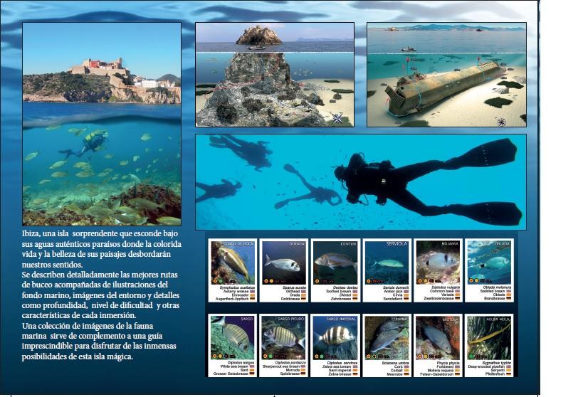Buceo en Ibiza | Buceo y Snorkel