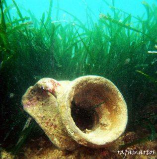 Arqueología subacuática en Valencia