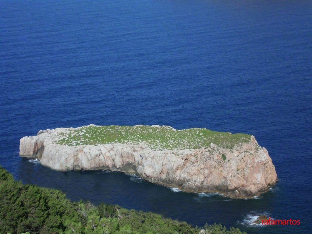 Buceo en la Illa Murada de Ibiza