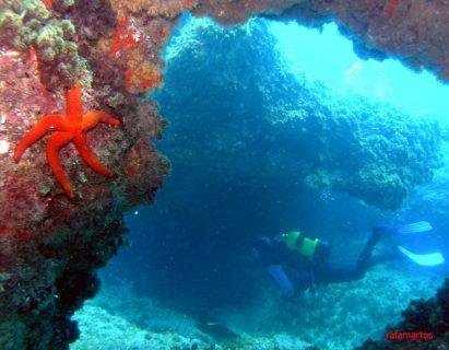 Buceo junto a la Cala Llebeig de Moraira