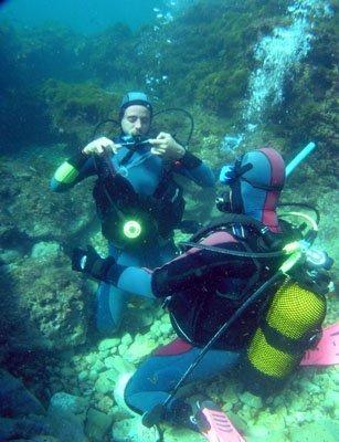 La visión bajo el agua