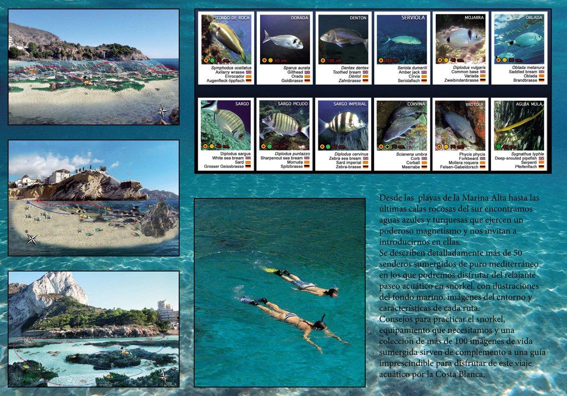 snorkel en la Costa Blanca contraportada