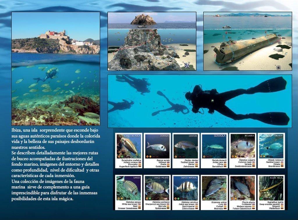 Guia buceo Ibiza, buceo en ibiza, rutas buceo ibiza, ibiza diving guide