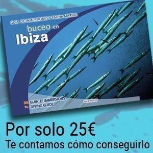 guia buceo ibiza