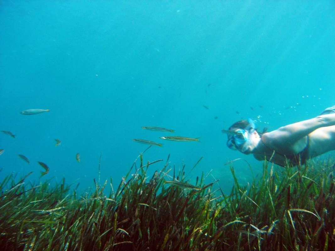 snorkel cala blanca 233